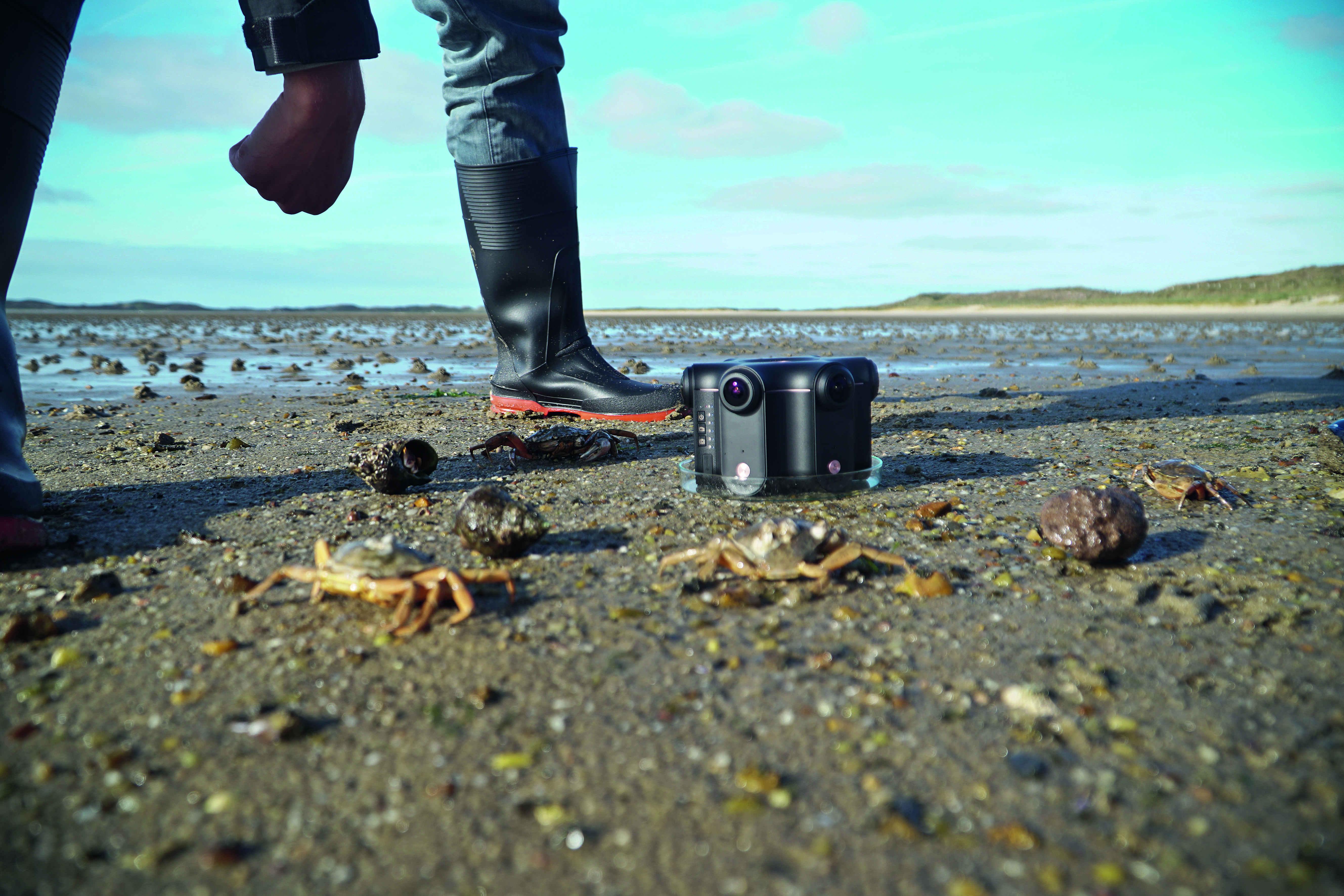 Foto: 360-Grad-Kamera: TVN dreht für die Naturgewalten Sylt.